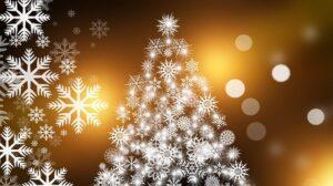 Natale 2020, gli auguri del Sindaco