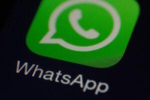 Al via ConcoNews, il servizio WhatsApp comunale